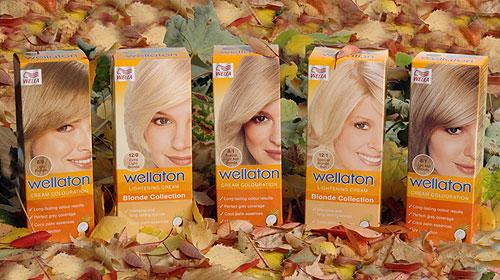 Wellaton Blonde Collection